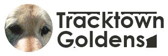 Tracktown Goldens